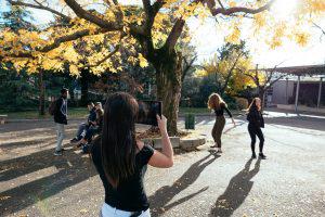 Mentorat, stages de photographie, pédagogie