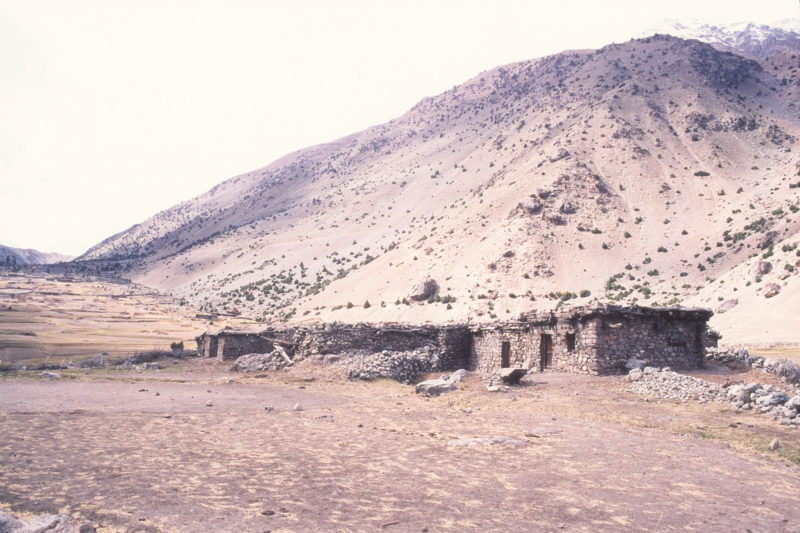 Pakistan, 1994