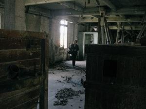 Stagiaire au travail, Rencontres d'Arles, 2010